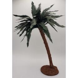 Palma grande