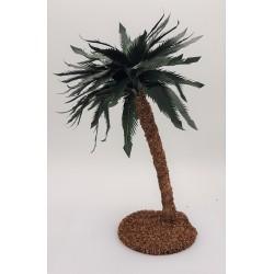 Palm 25 cm