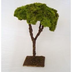Albero lichene maxi per...