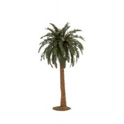 Palma h cm 32